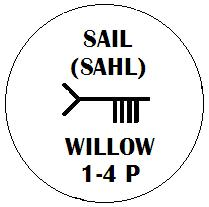 Sail - Willow Ogham