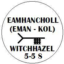 Eamhancholl - Witchhazel Ogham